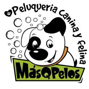 Peluquería Canina y Felina MásQPelos